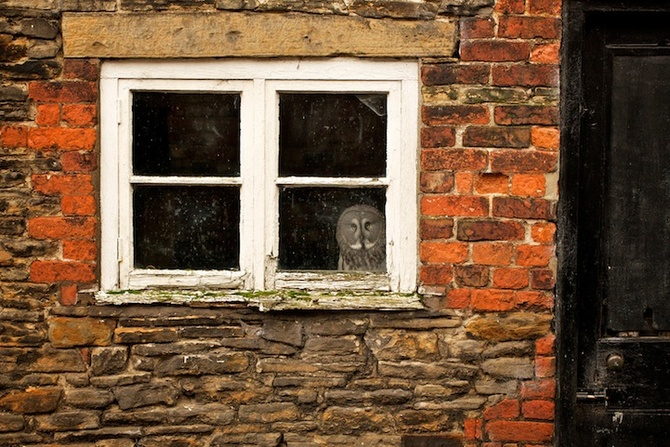 I like my house! — Mark Bridger