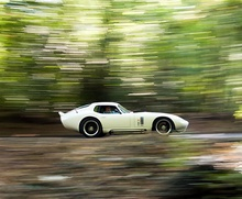 Shelby Daytona Cobra Coupe – 1965 фото 11