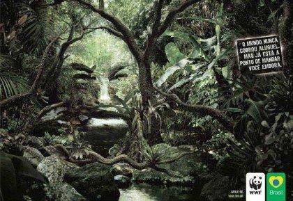 Плакат по защите природы картинки а 4
