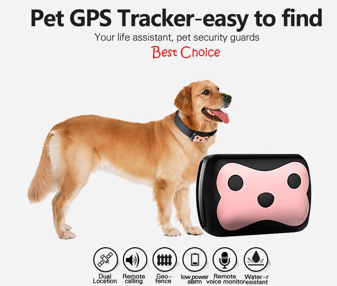 Найкорисніші речі для собак, котрі полегшать життя господарів, фото-7