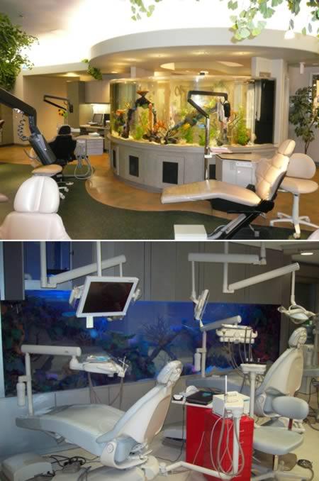Самые оригинальные стоматологические кабинеты мира
