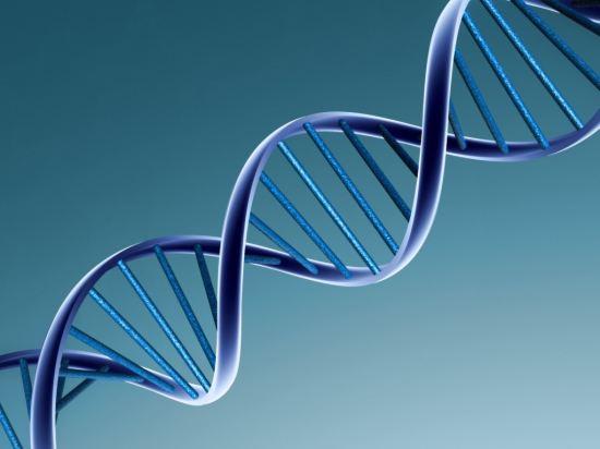 Наука: визначаємо колір очей по ДНК