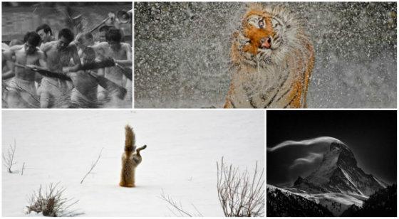 Стали відомі імена переможців фотоконкурсу Nat Geo 2012