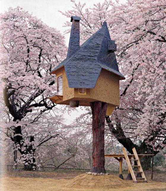 Лучшие домики на деревьях в мире