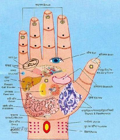 Схема точечного массажа головы